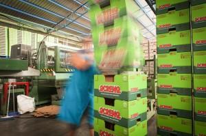 fotografia corporativa en malaga, fotos de empresa (12)